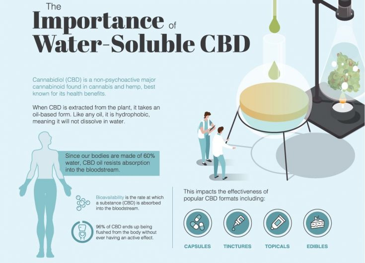 5 different methods of creating Water Soluble CBD